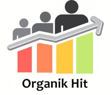 Aylık 30.000 Organik Ziyaretçi Gönderimi
